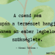csend_mentalgarden